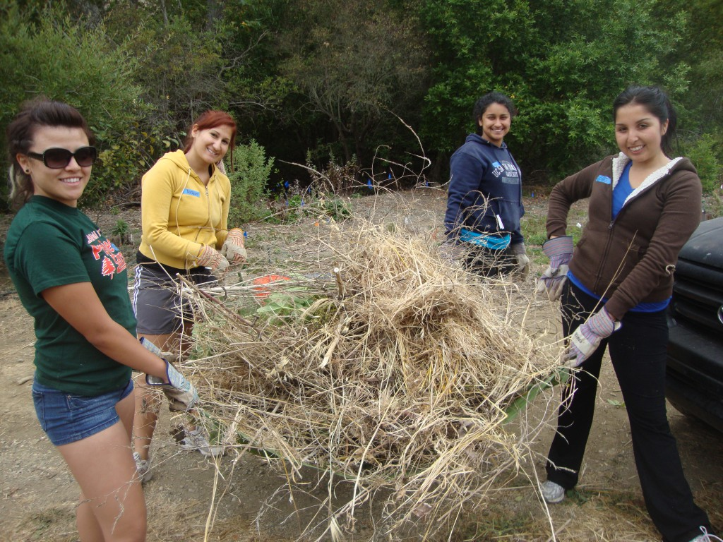 CF service project in Arroyo Hondo